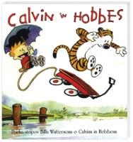 CALVIN IN HOBBES